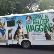 Mobile Spay & Neuter Waggin'