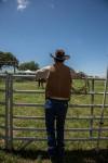 Cowboy_fence.jpg